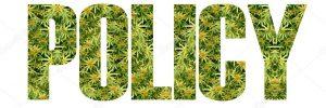 marijuana policy